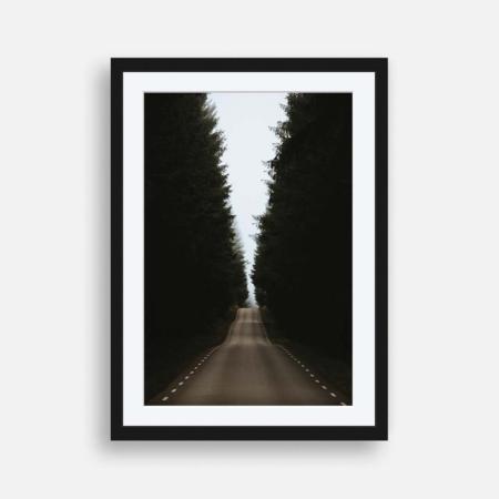 Raka vägen in i skogen